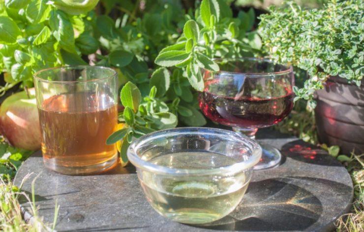 three bowls of vinegar