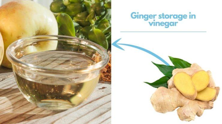 ginger in vinegar